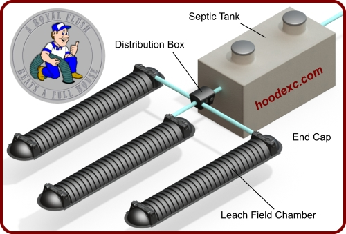 Septic System Diagram Graphic - Tank, Distribution-Box, & Leach Field