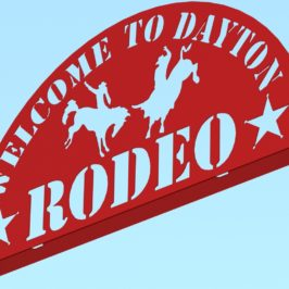 Here's Yer Sign: Dayton Rodeo Version