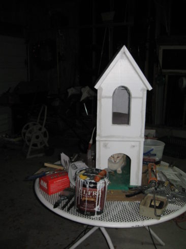 Cat House - A Work In Progress