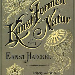 Kunstformen der Natur - Art Forms of Nature - 1904 - cover