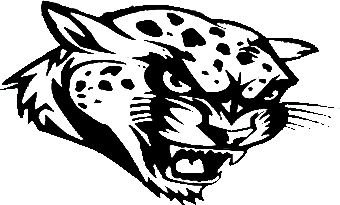 jaguar image after deleting many pixels of color, painting other colors black, and deleting anything else