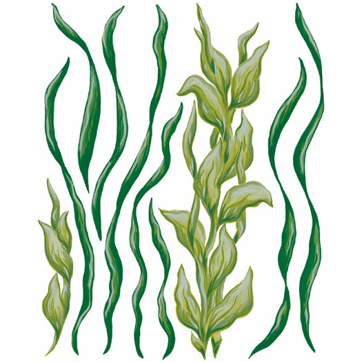 Unattributed Grass Kelp Graphic, inspiration for steel light baffles
