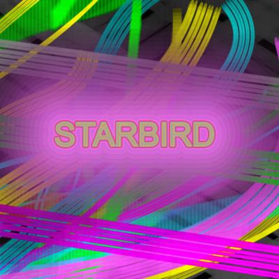 STAR BIRD - BANNER