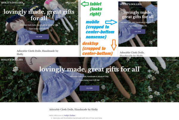 HOLLY'S DOLLIES - COVER IMAGES ARE A PAIN - GOOGLE MY BIZ WEBSITE